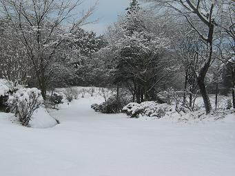 02-16 雪景色03