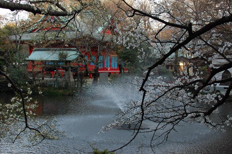 桜と弁財天