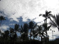 2008.11.15-19 hawaii 004