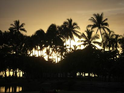 2008.11.15-19 hawaii 012
