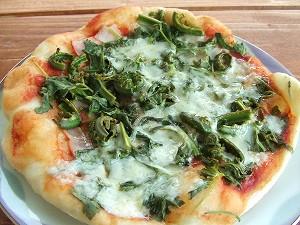 100521山菜ピザ