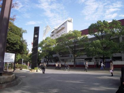 2009112002.jpg
