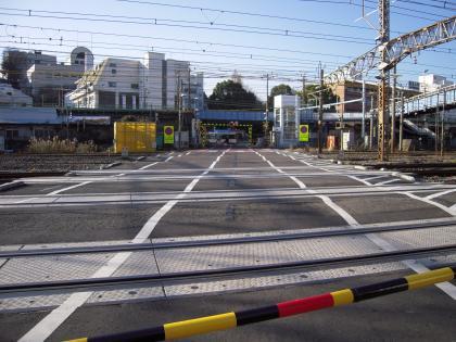 2009123001.jpg