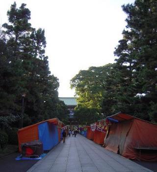 2009123009.jpg