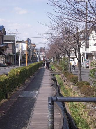 2010032215.jpg