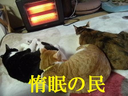 DSCF4161_20120331024943.jpg