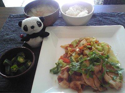 豚とキャベツの生姜ダレ焼き