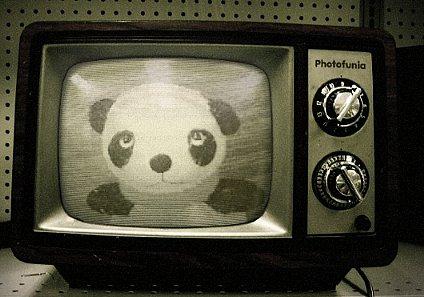 がんちゃんTV