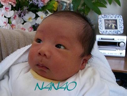 NANAO.jpg