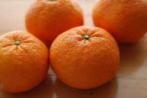 orange12-1.jpg