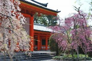 京都・三十三間堂