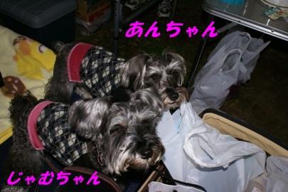 081123_24.jpg