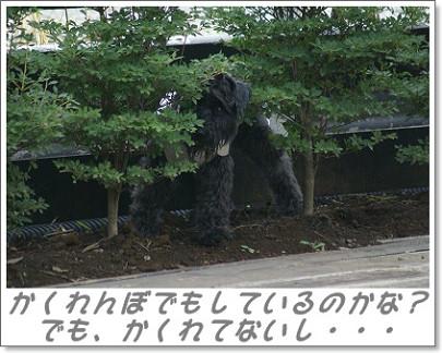 091021_03s.jpg