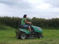 grasscutting