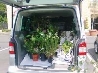 flowervan