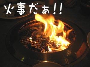 20050422_022.jpg