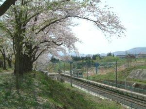 20050429_030.jpg