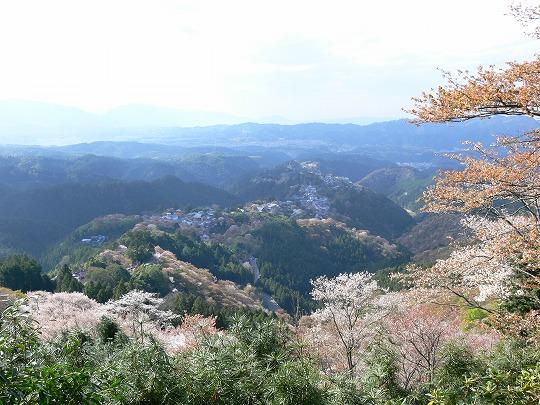 yosinoyama