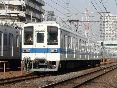P1090355.jpg