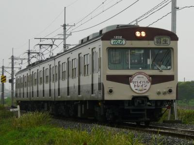 P1120071_1.jpg