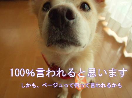 ki081209 (9)0000