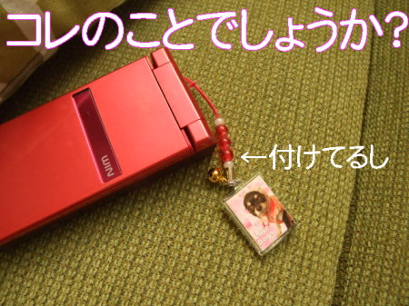 ki090203 (28)