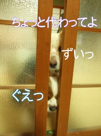 ki090131 (87)0000