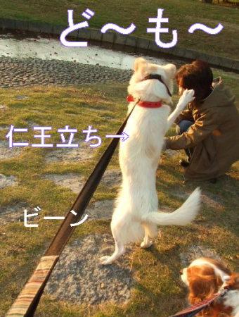 kimemo1.jpg
