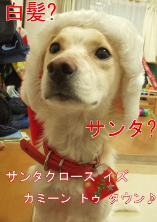 kimemo14.jpg