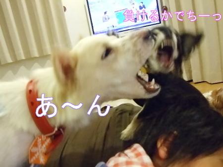 kimemo16.jpg