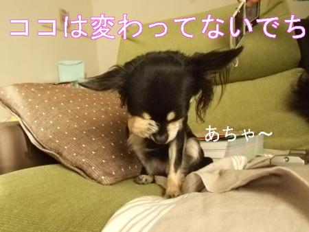 kimemo2.jpg