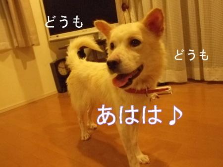 kimemo26.jpg