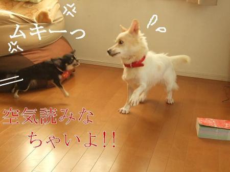 kimemo5.jpg