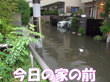 kozui08.jpg