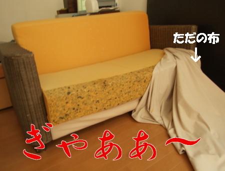 sofafa.jpg