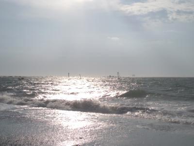 20091101umi.jpg