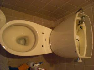 奈良 ハウスクリーニング 水回り トイレ 分解