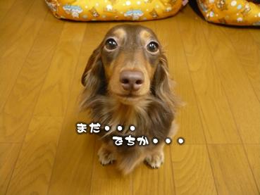 juri-cute03.jpg