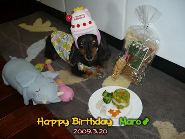 maro09bd-party_04.jpg