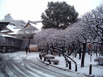 湯島天神 雪1