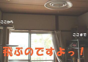05_0614_1.jpg