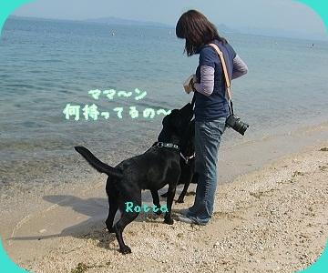2011 6 29 琵琶湖 87