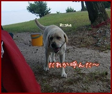 2011 6 29 琵琶湖 88