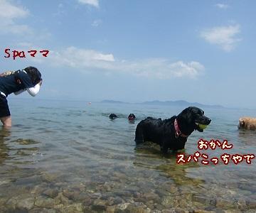 2011 6 29 琵琶湖 81