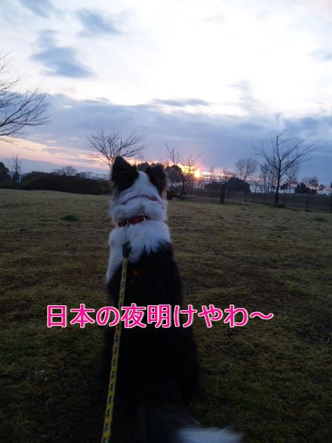 1q_20110427144604.jpg