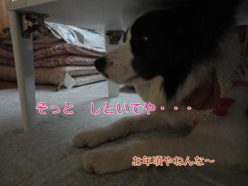 79_20110507145957.jpg