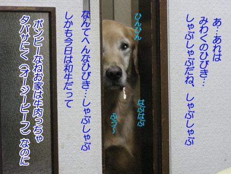 IMG_2694nw45.jpg