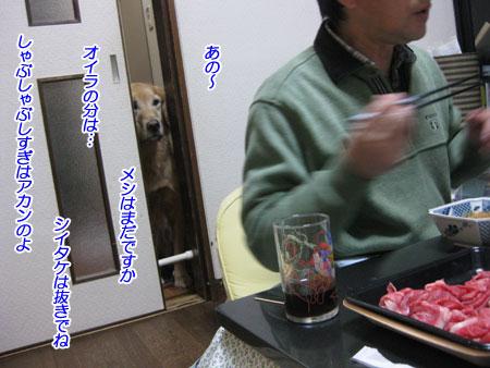 IMG_2697nw45.jpg