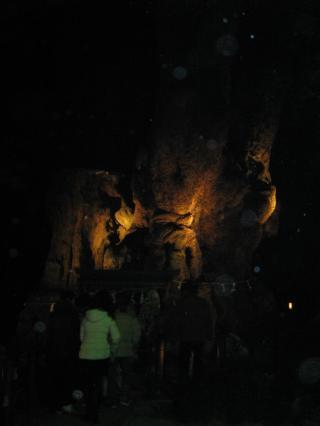 来宮神社初詣-3