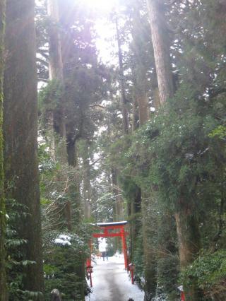 箱根神社‐3